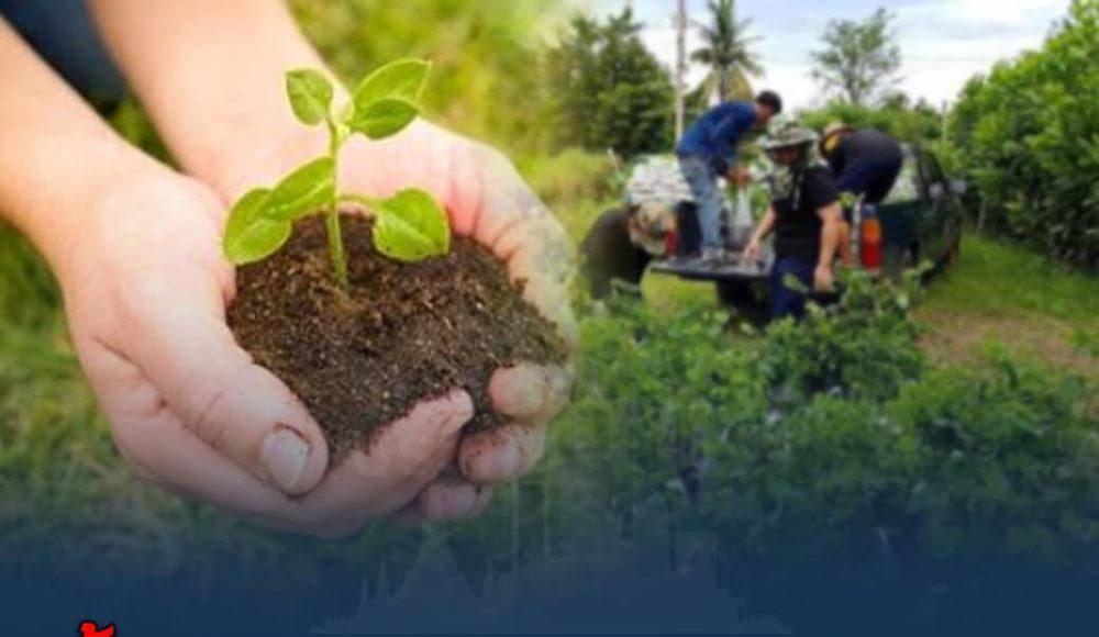 ย้ำ !! เกษตรกรรายใหม่ผู้ปลูกพืช ตรวจสอบ - ขึ้นทะเบียนภายใน 15 พ.ค.นี้