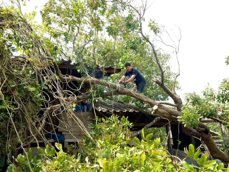 อำเภอสันทราย จัดกิจกรรมสัปดาห์รณรงค์ตัดแต่งต้นไม้ กิ่งไม้ บริเวณพื้นที่ที่ส่งผลกระทบต่อระบบสายส่งไฟฟ้า